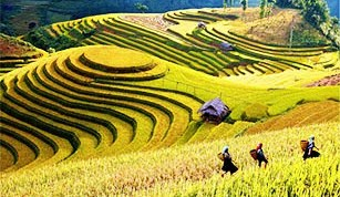 Sapa Tour Packages